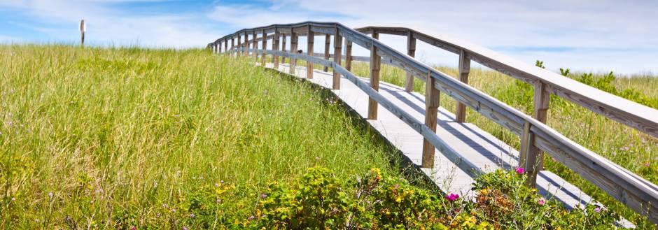 Cape Cod Spring Break